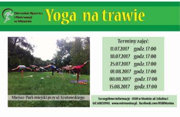 yoga na trawie maly
