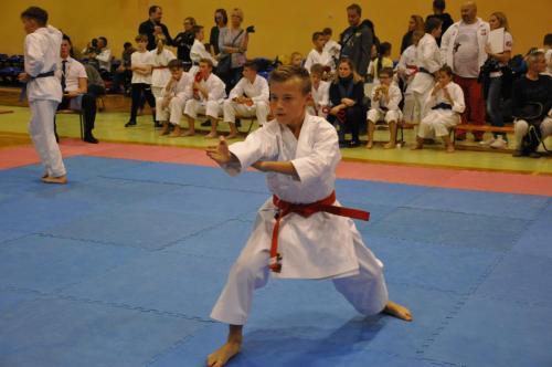 Turniej Karate LOTTO Dynamic Cup 17.11.2018
